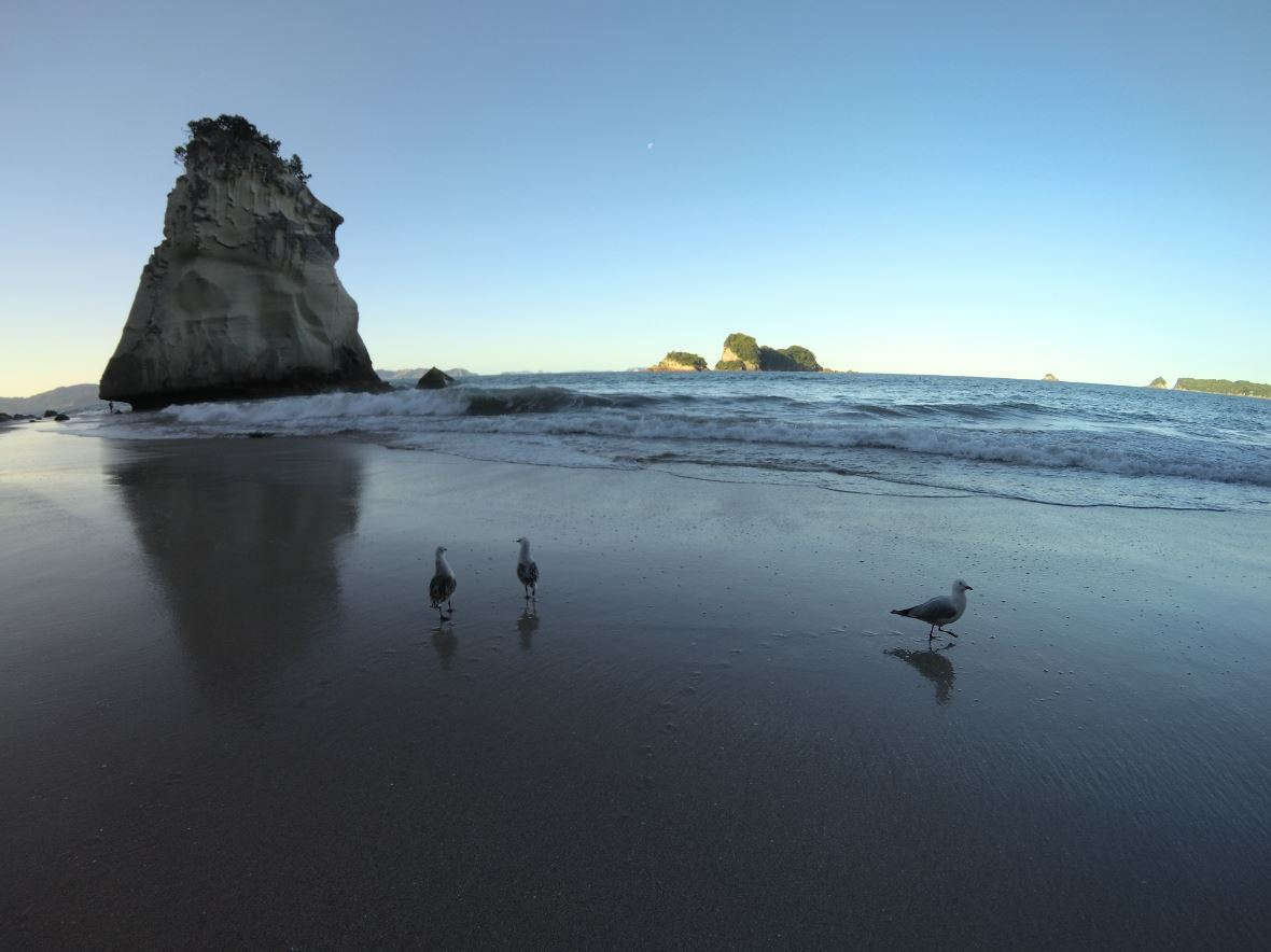 Plaża przy Cathedral Cove.JPG