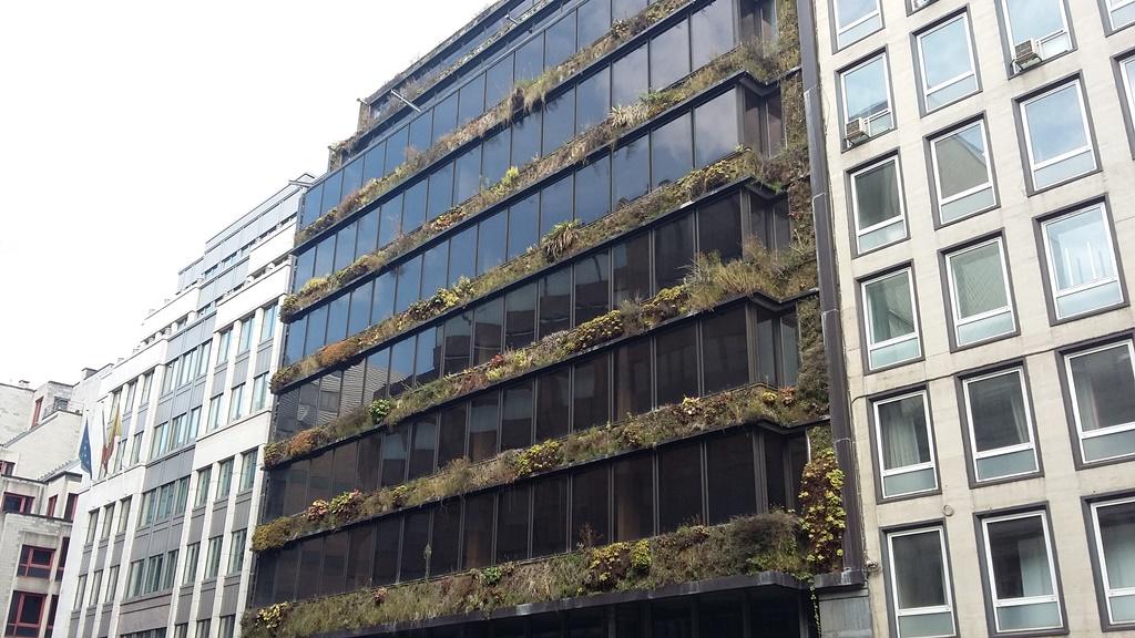 Bruksela 5.jpg
