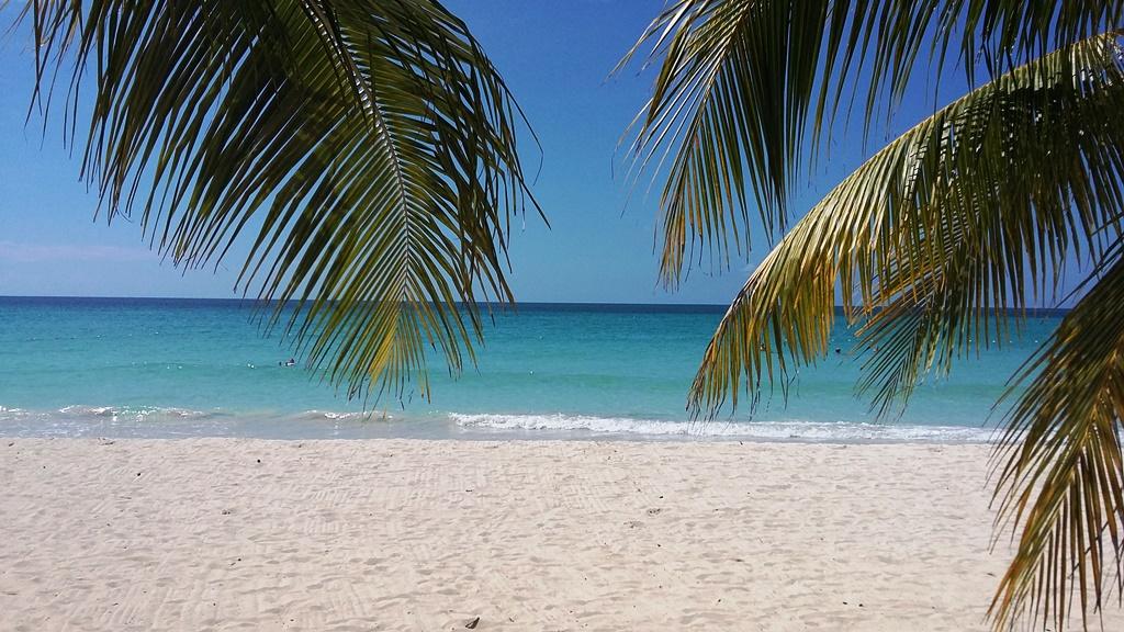 Jamajka 1.jpg